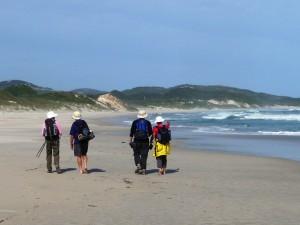 Bibbulmun Track Mazzoletti Beach walk