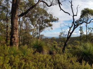 Perth Day Walks - April to November