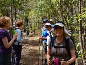 Collie Balingup social walking tour