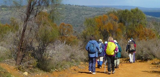 Day walks near Perth Walyunga walk