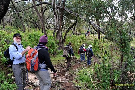 Hiking date in Perth