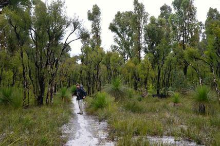 Collie to Balingup Recci, Bibbulmun Track Walking Diary