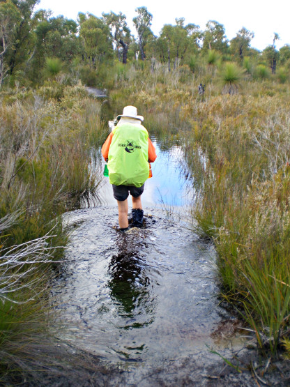 This is why we'll go in Autumn Wading Pingerup Plains Bibbulmun Track