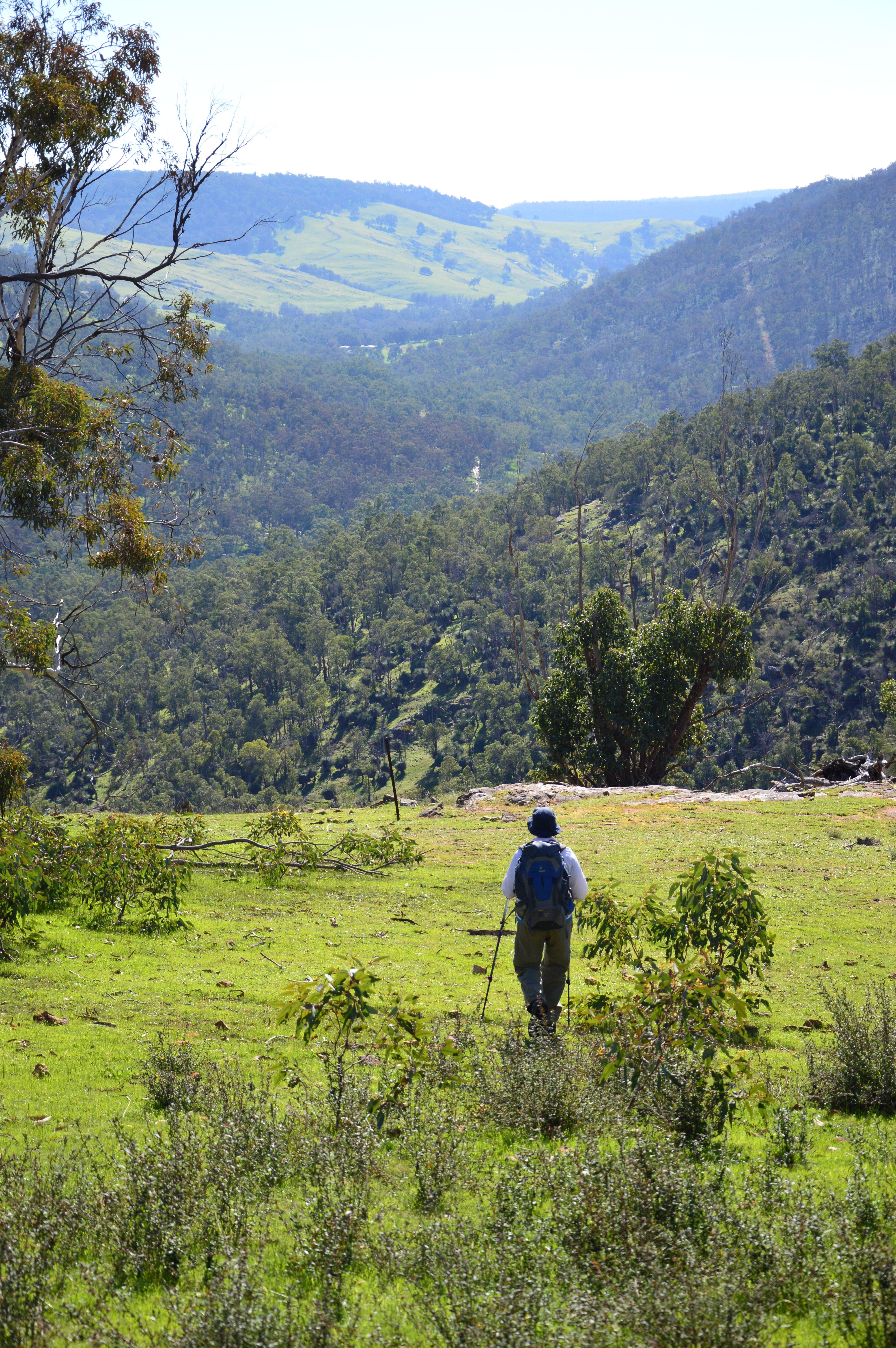 Paruna Wildlife Sanctuary Numbat Trail Inspiration