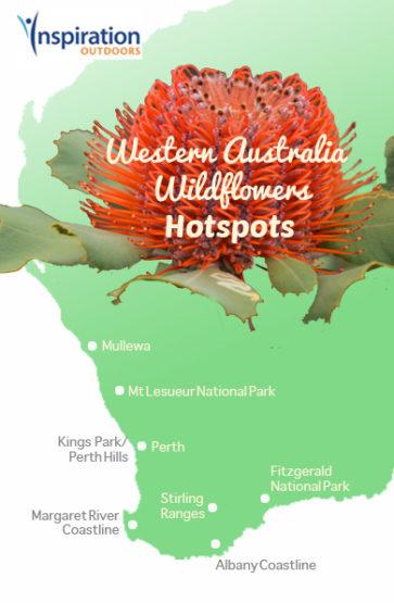 WA wildflower map