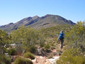 Larapinta Trail Walking Tour