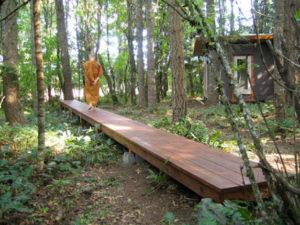 Walking Meditation Part 2 - walking with awareness