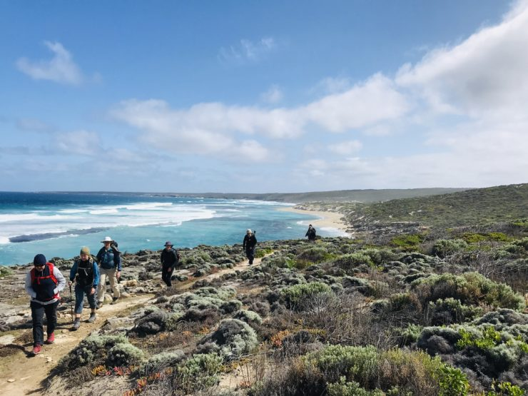 Day 3: Snake Lagoon to Remarkable rocks