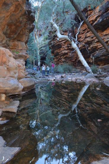 Alligator Gorge Flinders Ranges