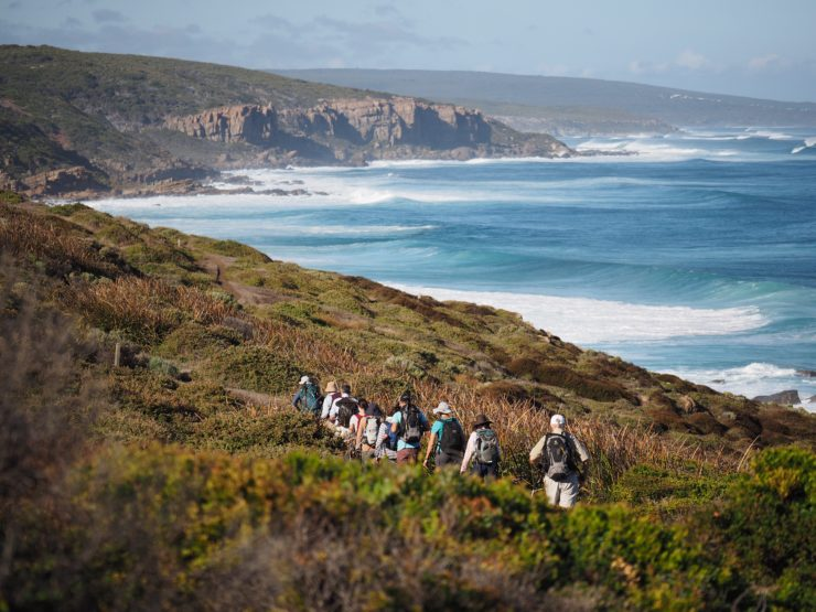 First Impressions: Walking the Cape to Cape Track